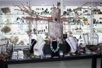 Dove & Lyre Museum | Retail