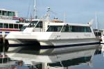 Seabird Charter