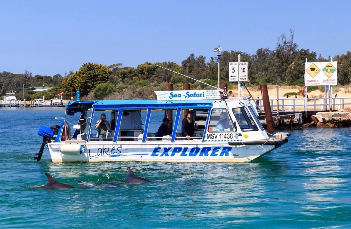 Lakes Entrance Sea Safari