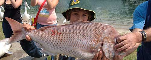 lakes entrance fishing charters