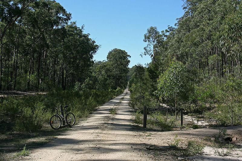 bike_trail.jpg